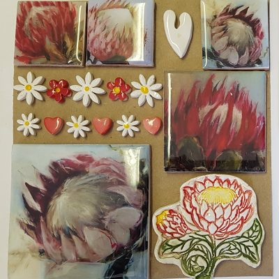 Combo Card Large - Proteas