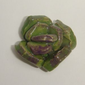 SUC-001 Succulent Small Dark Green C