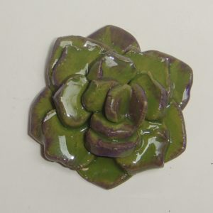 SUC-003 Succulent Large Dark Green C