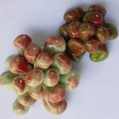 Succulents D