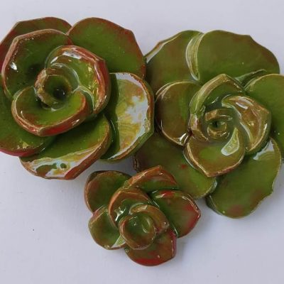 Succulents Rose A 2