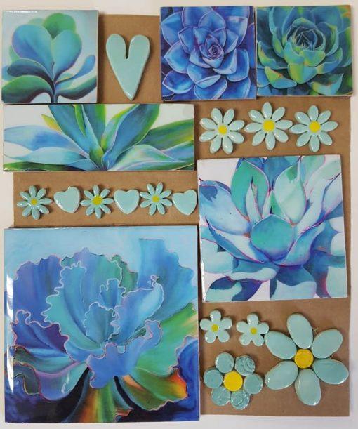 Combo Cards Blue Succulent Large