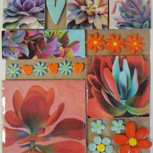 Combo Cards Orange Succulent Large