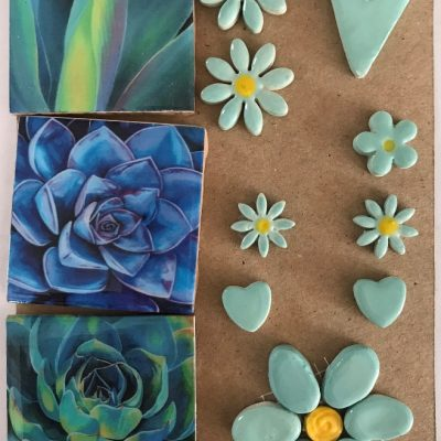 combo cards blue succulent medium