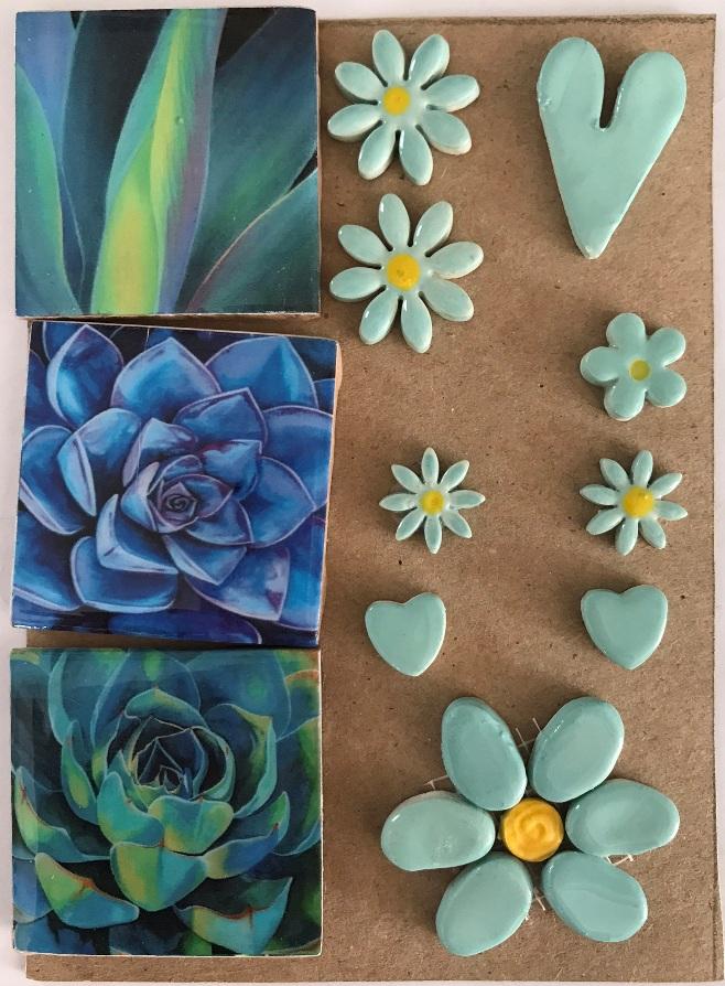 combo cards blue succulent medium