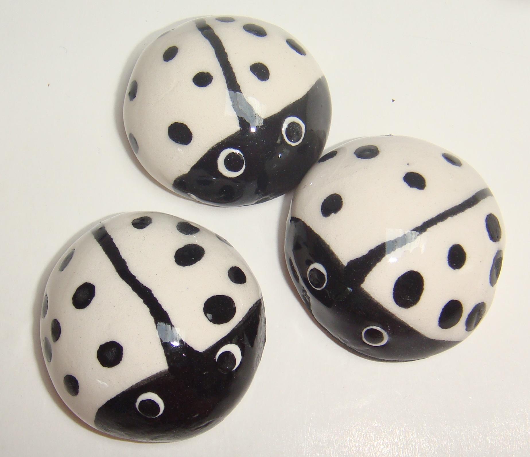 BUG-001 Ladybugs Large White