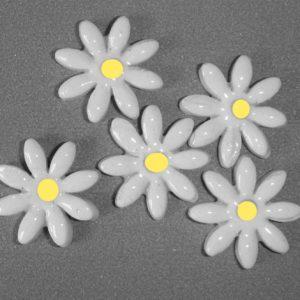 FLO-004 Daisy Small White