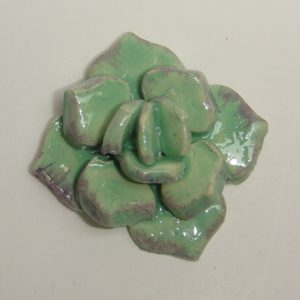 SUC-002 Succulent Medium Soft Green C
